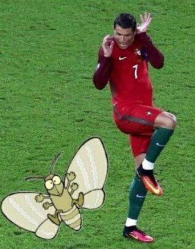 В один из моментов матча Криштиану не на шутку напугался мотылька