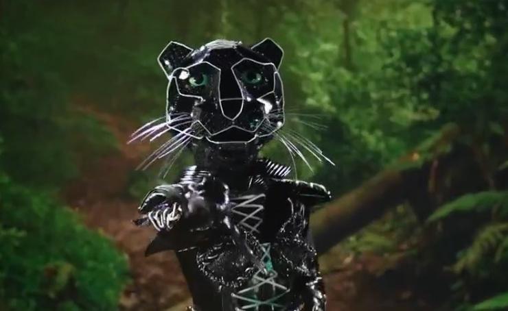Кто прячется под маской Черной пантеры?