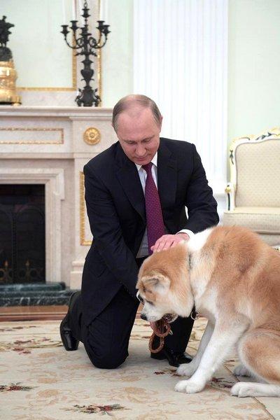 Юмэ подарили Путину в 2012 году
