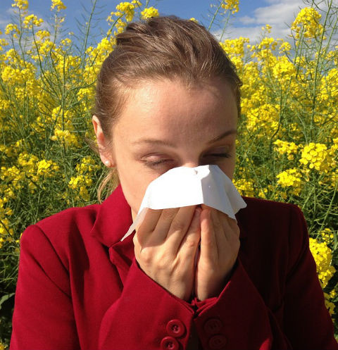Будьте здоровы: способы борьбы с аллергией, о которых вы не знали