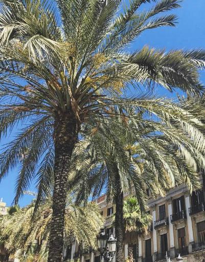 Солнечная Барселона не перестает радовать теплой погодой
