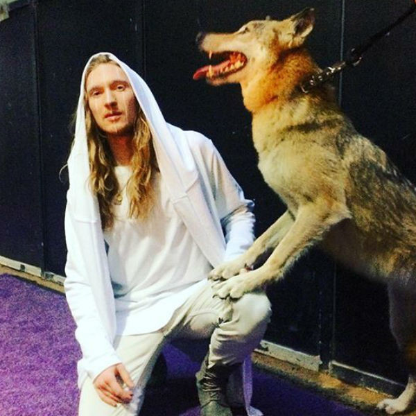 Музыкант будет выступать с волчицей