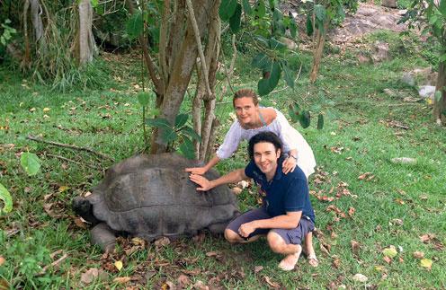 На Сейшелах действует специальная программа по усыновлению младенцев… черепах