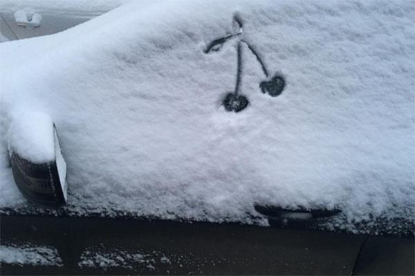 Таня Терешина сразу поняла, что нужно делать с машиной, занесенной снегом