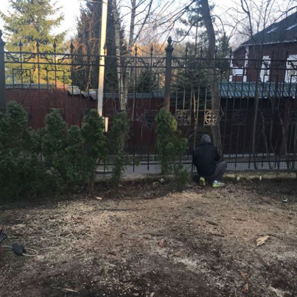 Сейчас работники восстановили забор