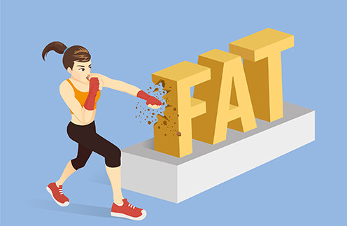 Жир — это не только неподвижная бесполезная масса