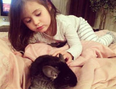 Джиган и Оксана Самойлова пополнили домашний зоопарк