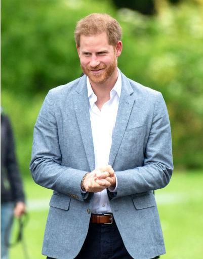Если же Гарри появляется на мероприятиях в одиночестве, он всегда много улыбается и общается с поклонниками