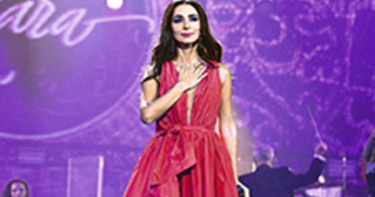 Певица Зара осваивает новую профессию