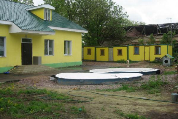 Центр «Велес» был основан в 2007 году, сначала тут помогали белькам