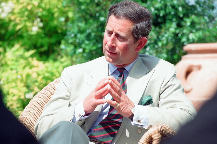 Принц был уверен, что в кризисе его брака виноваты журналисты