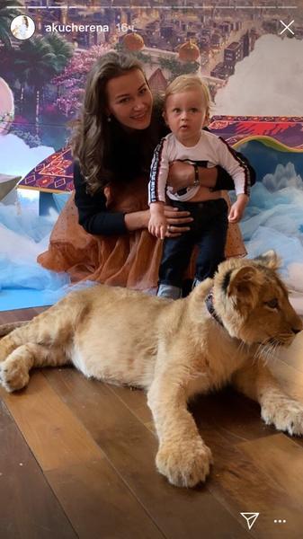 Попугаи и маленький львенок тоже были приглашены на праздник