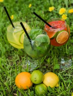 Лимонный, Огуречно-базиликовый и Перечный лимонады